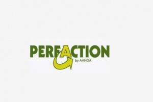 Perfaction Teambuilding
