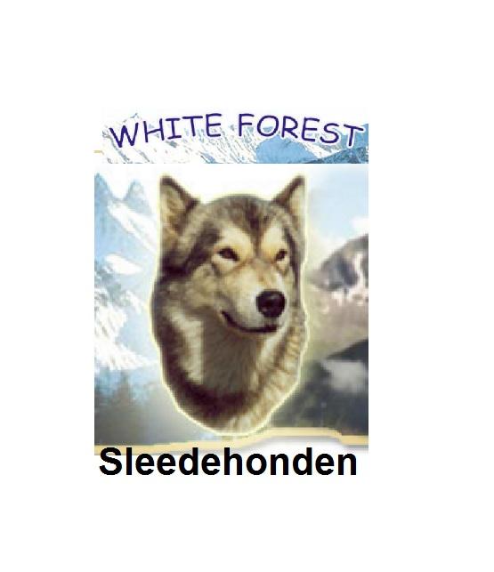 Sledehonden Ardennen