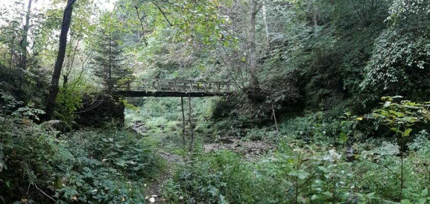 Wandeling Reinhardstein Ardennen