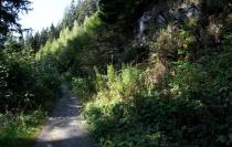 Wandeling Reinhardstein6