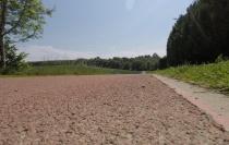 38 Km Petit Brin Ardennen11