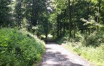 38 Km Petit Brin Ardennen8