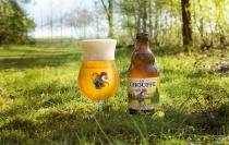 Brouwerij La Chouffe4